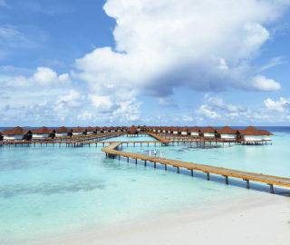 Club Maldives 056
